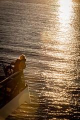 Seattle-1468 (Yale Gurney Pictures) Tags: ferriswheel ferry fish landmark photo photography pike pikemarket pikeplacemarket pugetsound seattle spaceneedle yalegurney washington usa