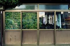 GREEN IN HOUSE (m-louis) Tags: 6713mm j5 nikon1 rsg hiroshima house japan laundry plant 家 広島 日本