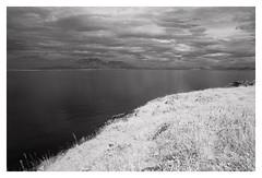 (2018) (phamnes) Tags: norway epsonv600 austbø summer slr 35mm 135film r72filter blackandwhitefilm infraredphotography infraredfilm infrared superpan200 rolleisuperpan rollei sigma20f18 sigma20mm sigmalens nikonf301 nikon