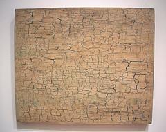 Desert Surface #1, by Vija Celmins (JB by the Sea) Tags: sanfrancisco california december2018 financialdistrict sanfranciscomuseumofmodernart sfmoma vijacelmins painting