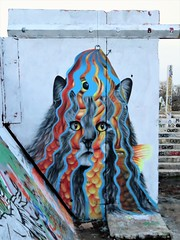 Cee Pil / Dok Noord - 18 feb 2019 (Ferdinand 'Ferre' Feys) Tags: gent ghent gand belgium belgique belgië streetart artdelarue graffitiart graffiti graff urbanart urbanarte arteurbano ferdinandfeys ceepil