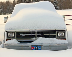 March Snow (C.A.Johnston) Tags: 1986 dodge ram 250 now winter canada alberta white truck