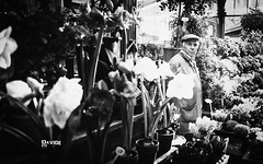 Paris - 2015 (davide978) Tags: mg4538 davide978 davide colli mini torre tour eiffel paris parigi bmw street bokeh canon 5d 35 35mm old light luci night bouble bolle sky sfocato full frame ef f2 is usm profondità di campo © photography canonef35mmf2isusm
