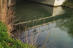 an der #spoy (txchris86) Tags: instagram ifttt wasser wasserlandschaft wasseroberfläche kanal channel nature builtstructure day tag edited portrait