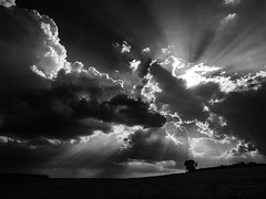 Fuga (una cierta mirada) Tags: storm stormy sky clouds nature weather cloudscape sun rays land earth landscape bnw blackandwhite outdoors bw panasonic dmcgx8 lumix vario