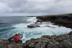 watching the waves (thomas.erskine) Tags: 20190301dsc02599tee 2019 mar barbados cliffs waves patrick