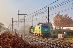 15 novembre 2018 BB 75117 Train Laluque -> Bordeaux-Hourcade Rion-des-Landes (40) (Anthony Q) Tags: sncf bb75000 ferroviaire desserte train fret bb75117