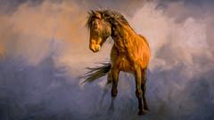 One Trick Pony (emiliopasqualephotography) Tags: horse pony wildhorse nevada photomanipulation art fineart
