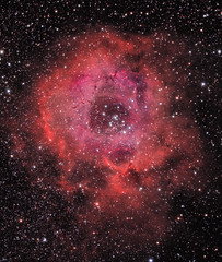 Rosette Nebula / Caldwell 49 (rex.on.life) Tags: nebula stars astronomy astrophotography caldwell canon meade