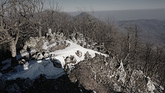 cold and wind and noise (LubosK) Tags: snow sneh les forest rock skala carpathians karpaty hate cold dead noise death blackwhite winter trip garden