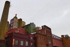 beer buildings (kurt schlosser) Tags: seattle rainier beer brewery