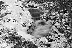 Waters in the Snow (steve_whitmarsh) Tags: aberdeen scotland scottishhighlands highlands mountain hills bw monochrome blackandwhite winter snow ice water stream burn rocks longexposure waterfall topic cairngorms