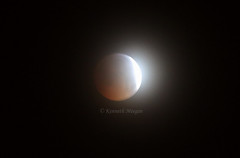 Super Blood Wolf Moon (Ken Meegan) Tags: superbloodwolfmoon lunareclipse supermoon wolfmoon eclipse moon dublin 2112019 bloodmoon