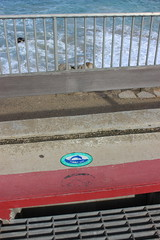 IMG_9798 (mudsharkalex) Tags: california pacificgrove pacificgroveca drainsto drainstoocean