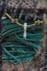 3KB11203a_C (Kernowfile) Tags: pentax cornwall cornish stives harbour smeatonspier rope lobsterpot pier fishing pentaxforums