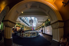 Looking In (Jared Beaney) Tags: canon canon6d australia australian photography photographer travel sydney city queenvictoriabuilding victorian architecture arch fisheye