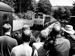 Lost in Music (sjpowermac) Tags: lostinmusic enthusiasts 50035 arkroyal waiting watching trainspotting kwvr oxenhope gala englishelectric class50 diesel locomotive driver camera whistle hoover summer
