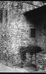 (Jeremy Whiting) Tags: florence firenze italia italy bw black white monochrome analog analogue canon 35mm ae1 europe architecture mundane