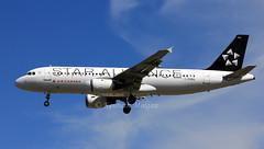C-FDRK (Ken Meegan) Tags: cfdrk airbusa320211 0084 aircanada toronto pearson 662014 staralliance logojet airbusa320 airbus a320211 a320