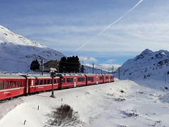 Bernina Red Train and snow (Claude M.D.) Tags: bernina train snow winter berninaredtrain unesco unescoheritage landscape invierno inverno neve switzerland swiss tren trenes railway deamlike dream sueno magic outdoor fable tale fiabesco trip journey voyage viaggio viaggiare travel traveller experience adventure avventura