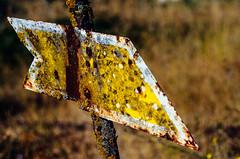 Oldie (Walimai.photo) Tags: elcubodetierradelvino zamora spain españa flecha arrow train tren nikon d7000 detail detalle helios