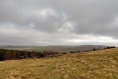 The view from Foxlow Edge (Bods) Tags: walk peakdistrict goytvalley foxlowedgewalk highpeak derbyshire foxlowedge peakdistrictnationalpark
