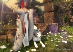 GREY WOLF (Rachel Swallows) Tags: got gameofthrones iceandfireevent crown collar armour king queen fantasy wolf drunkenbrokkr