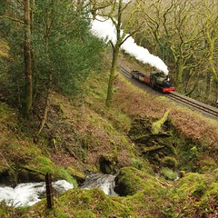 Past the waterfall (Sundornvic) Tags: steam trains locomotives welsh narrowgauge talyllyn woods forest trees green rail railway transportation heritage preservation wales snowdonia