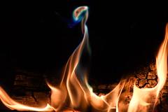 DSC_5587 (griecocathy) Tags: macro feu flamme bois braise noir jaune bleu vert orange crème turquoise