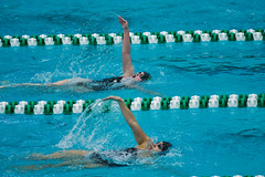 142A1353 (Roy8236) Tags: gmu american old dominion swim dive