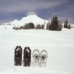 Mountain Mix (Aaron Bieleck) Tags: hasselblad500cm 120film analog 6x6 square film filmisnotdead hasselblad mediumformat wlvf fujipro160s snowshoeing mountain winter mthood snow oregon pnw pacificnorthwest timberline 60mmct
