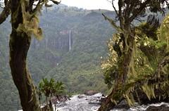 Aberdare falls (orientalizing) Tags: kenya waterfall gorge mountains landscape aberdarenationalpark