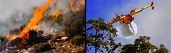 FRANCE - Extinction of fire in Provence (Jacques Rollet (Little Available)) Tags: fire incendie provence avion flamme france feu plane airplane eau water flame blaze extinction