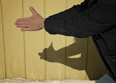 I don't like to brag, but my shadow puppet skill is amazing  6/52 (Boered) Tags: chico dog hands shadowpuppet me shadow 52weeksfordogs shadowplay yellow barn