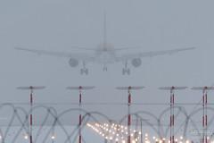 H18A9091 (Said Aminov) Tags: aviation aircraft avgeek airport vnukovo vko uuww moscow russia airbus a319 snow winter