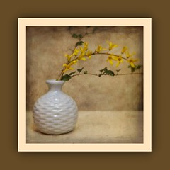 Vase with Forsythia (N.the.Kudzu) Tags: tabletop stilllife blue vase forsythia flowers canoneosm lensbabytrio28 lightroom photoscape texture frame