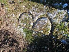 Blacksmith's 'B' cleared of moss SX 75714 76459 (Bridgemarker Tim) Tags: oldsmithsshop blacksmithsshop ilsington dartmoor heytor haytor sighead bagtormanor