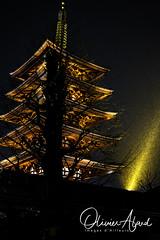 Japan19T_IO_0598-1 (oalard) Tags: japan japon canon 1dmkiv tokyo temple rain pluie