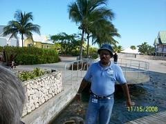 tour guide at Grand Cayman Turtle Farm (miosoleegrant2) Tags: daddy silverdaddies mature men siverdaddy silverfox salt pepper fit old hombre maduro guapo portrait grey guy man older vacation tourist outside male butch gentleman guys dude studly manly dudes handsome stud candid hunk sexy masculine people barbate jeans butt hat cap
