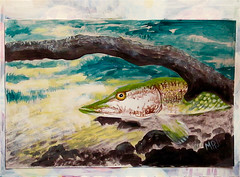 April 2019 (M.P.N.texan) Tags: art paint painting animal fish pike calendar acrylic acrylics handpainted original mpn