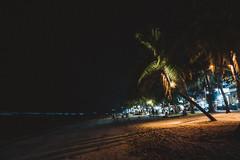 _MG_3280 (waychen_c) Tags: ph philippines visayas centralvisayas bohol provinceofbohol panglao municipalityofpanglao panglaoisland alonabeach boholsea sea beach coast coastline seascape island night nightscape nightview tree coconuttree light cebutour2019 菲律賓 維薩亞斯 維薩亞斯群島 中維薩亞斯 保和 保和省 邦勞 邦勞島 阿羅那海灘 海灘 椰子 南洋 2019宿霧旅行