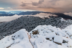 Covered in snow (Praveen Purohit) Tags: photography landscapes landscapephotography kartikswami snow winter himalaya himalayas mountains travel travelphotography india uttarkhand incredibleindia morninglight morning shiva lordshiva explore