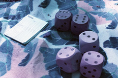Wood Block Yatzy (Magnus Bergström) Tags: 35mm film analog canonae1 canon lomography lomo xr100400 purple lomochrome xr 100 400 100400 lomochromepurplexr100400 sverige sweden värmland epson v500 scanner karlstad game dice yatzy blanket picnic summer