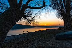 Sunset Lake Constance II (heikoosswald) Tags: sunset sonnenuntergang bodensee badenwürttemberg deutschland germany sonne strand farben frühling 2019 march märz landscape lakeconstance landschaft sony alpha7m3 ilce7m3 fe281635gm nisi 1635mm gm ©heikooswald
