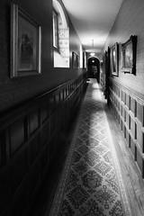 Knightshayes Court (2) (~g@ry~ (clevedon-clarks)) Tags: knightshayescourt blackwhite black white monochrome mono historic history nationaltrust uk devon estate gardens nikon d810 nikkor 1635mm