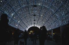 Navidad Ags (JPGooner) Tags: ags aguascalientes city street streetlife life christmas navidad travel