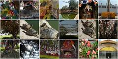 mayadevi3 (belight7) Tags: maya devi 3 mosaic nepal collage lumbini buddha birth place shanti