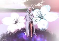 "Psychique (Mistic Aura ""Nevrose"") Tags: witch avatar secondlife sl second life whitehair girl elf fairy flower cloud levitation psychic wonderland bento mesh"