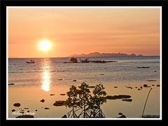 coucher de soleil ( sunset) (hcortade) Tags: thailande travel wolrld samui ile voyage coth5 monde island mer plage playa beach sunset coucherdesoleil ciel rouge barques boat