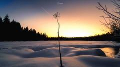 Sunrise over Etange de la Gruere (Chrisgraphy) Tags: étang de la gruère switzerland schweiz snow cold sunrise
